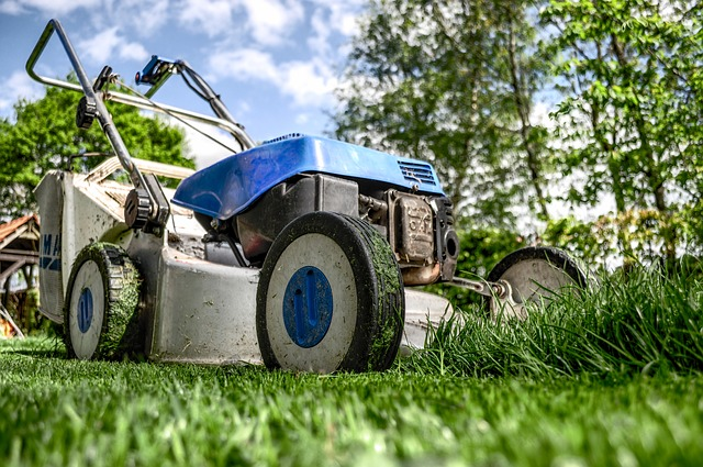 Mowing lawns is a great start for boys to start learning the value of hard work and responsibility.