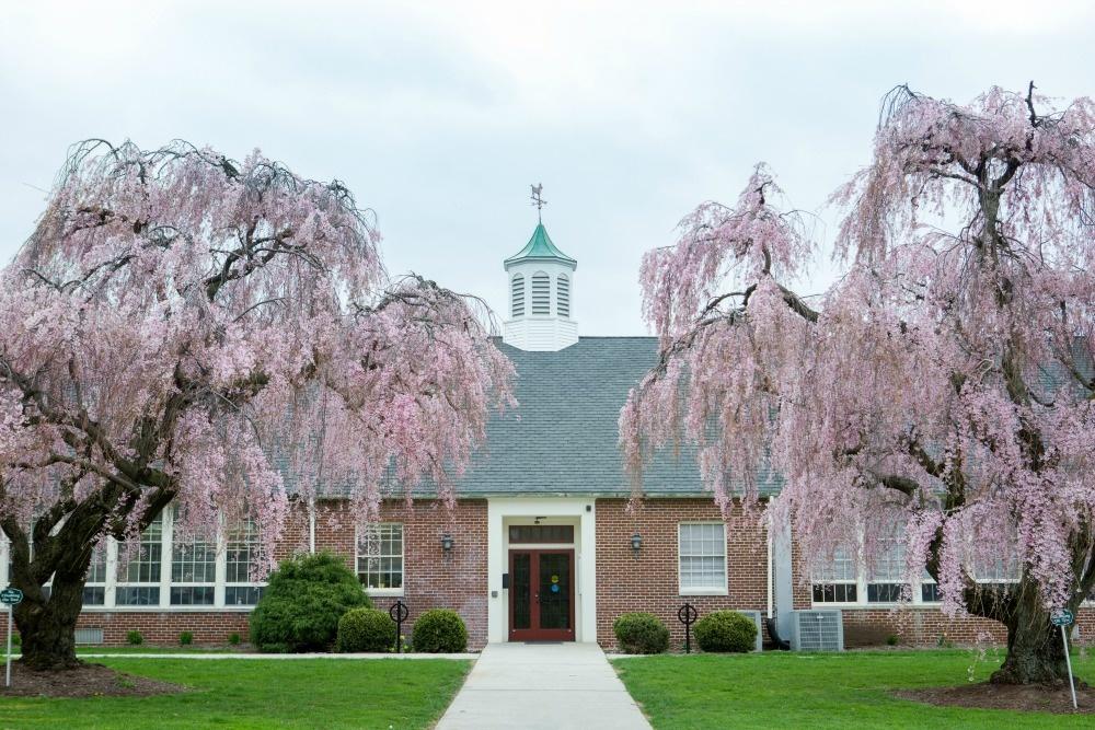 veritas campus | Veritas Academy | Classical Christian School